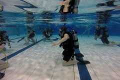 diveclinic