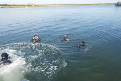 duik-bij-het-koepeltje