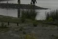 oostvoornse-meer